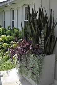 Modern Garden Planters 281 Best Containers Images On Pinterest Landscaping Pots And