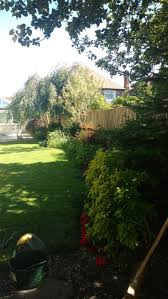 best 25 feather edge fence panels ideas on pinterest fence