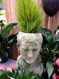 portland native plants garden amazing garden center by weston nurseries u2014 chiccapitaldc com
