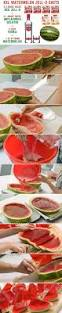 history of the watermelon here u0027s how to make xxl watermelon jell o shots