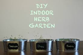 it u0027s cailey diy indoor herb garden