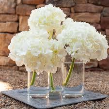hydrangea centerpieces simply lush hydrangea centerpiece single hydrangea lush and