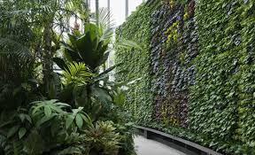 Wall Gardens Sydney by 20 Things To Do In Sydney This Winter For Under 20 Concrete