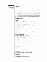A Good Objective Statement For Best Free Home Design - free sle resume objectives inspirational resume template