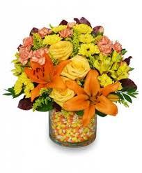 auburn florist candy corn bouquet in auburn ma auburn florist