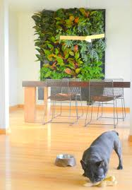 Vertical Wall Garden Plants by Phils And Ferns Vertical Garden U2014 Florafelt Vertical Garden Systems