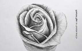 3d pencil drawings of roses drawing of sketch