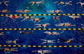150 M To Ft Swimming Workouts Build To A 500 Meter Or Yard Swim