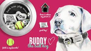 origami owl paws collection dog lockets u0026 collars youtube