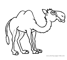 camel coloring getcoloringpages