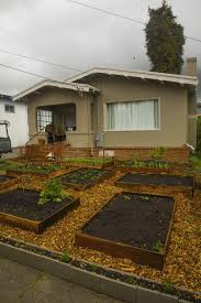 Vegetable Garden Front Yard by A Man Replaces His Lawn With A Giant Vegetable Garden And No Regrets