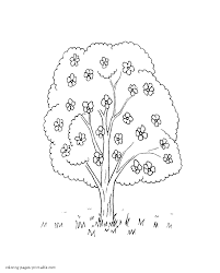 spring nature coloring page blossom tree