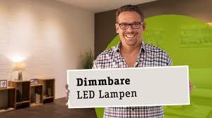 Led Esszimmerlampe Dimmbar Dimmbare Led Lampen Die Richtige Wahl Von Leuchtmittel Trafo