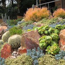 California Landscaping Ideas Mesmerizing Southern California Landscaping Ideas Pictures Best