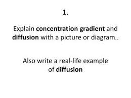 ppt explain concentration gradient and diffusion with a picture