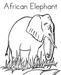 african animal coloring pages zebra animal coloring pages of