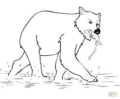 brown bear eric carle free printables printable coloring book