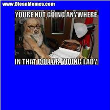Disney Valentine Memes - memes google