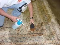 How To Wash Rugs At Home Cleaning Your Rug At Home