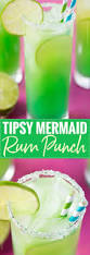 Party Cocktails Punch - best 25 rum punch recipes ideas on pinterest rum punch cocktail