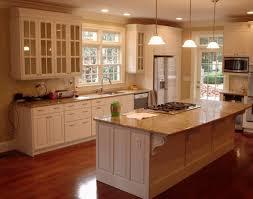 cabinet kitchen cabinets ikea awesome ikea cabinet doors ikea