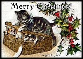 Merry Christmas Cat Meme - vintage christmas cat glitter graphic greeting comment meme or gif