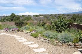 Desert Landscape Ideas For Backyards Ideas For Desert Landscaping On The Small Backyard Planted With