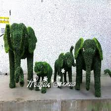 Topiary Dog 100 Topiary Shapes Sale Buxus Sempervirens Topiary Cones