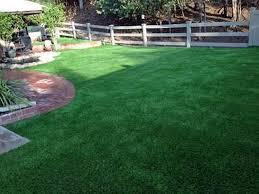 Synthetic Grass Backyard Fake Grass Fowler Colorado Landscaping Backyard