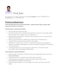 Example Of Profile For Resume by Vivek S Jeejo Operations Executive Resume
