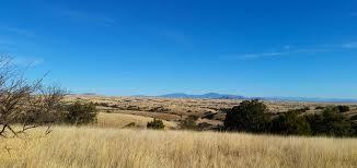 hunting mearns quail in arizona montezuma quail hunting