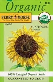 sunflower seed packets sunflower seed packets thereviewsquad