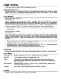 Programming Resume Examples by Outstanding Professional Construction Safety Officer Templates