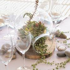 best 25 terrarium wedding centerpiece ideas on pinterest