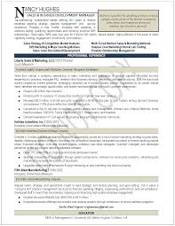 Sample Resume For Business Development Executive by Director Of Business Development Resume Free Resume Example And