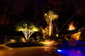 chic low voltage landscape lighting in pool tropical with next to