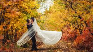 fall wedding unique fall wedding decor ideas kxly