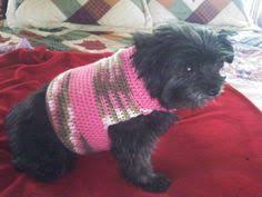 size small dog free crochet pattern easy enough for anyone