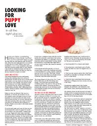 looking for puppy love in all the right places women u0027s lifestyle
