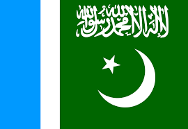 Pakistane Flag File Jamaat E Islami Pakistan Flag Svg Wikimedia Commons