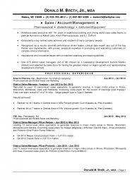 Sales And Marketing Director Resume Regional Manager Resume Examples Resume Example And Free Resume