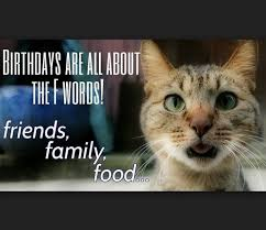 Cat Birthday Memes - birthday memes for friend wishesgreeting