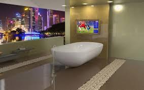 bathroom mirror cost bathroom fresh tv in bathroom mirror cost designs and colors
