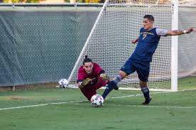 senior goalkeeper puts hornets u0027in the right position u0027 to succeed