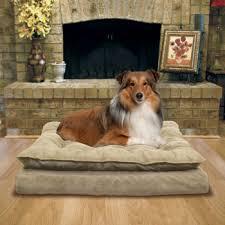 pillow top dog bed legit costco kirkland signature pillow top orthopedic pet napper