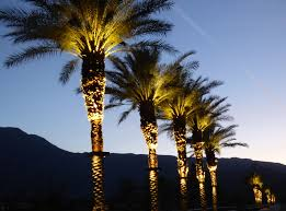 Led Landscape Tree Lights Lighting Tree Lighting Ideas Light Storage Outdoors