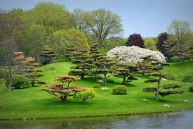 Botanical Gardens Il Japanese Garden Stock Photo Image Of Green Gardening 45219122