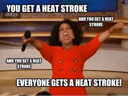 Heat Memes - you get a heat stroke everyone gets a heat stroke and you get a