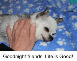 Life Is Good Meme - goodnight friends life is good friends meme on ballmemes com