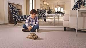 A 1 Carpet A 1 Carpet Market Carpet A1 Twitter